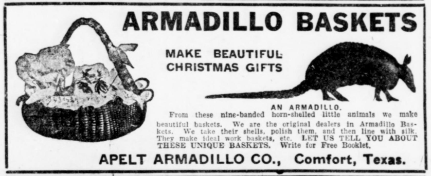 "Advertisement with a picture of an armadillo and a basket made from an armadillo. Text reads, ""Armadillo Baskets Make Beautiful Christmas Gifts. From these nine-banded horn-shelled little animals we make beautiful baskets. We are the original dealers in Armadillo Baskets. We take their shells, polish them, and then line with silk. They make ideal work baskets, etc. Let us tell you about these unique baskets. Write for Free Booklet. Apelt Armadillo Co., Comfort, Texas."""
