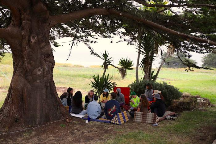 Group discussion at the Tree of Life, Mushroom Farm, DWeb Camp 2019. A group sits at the base of a large cypress tree.